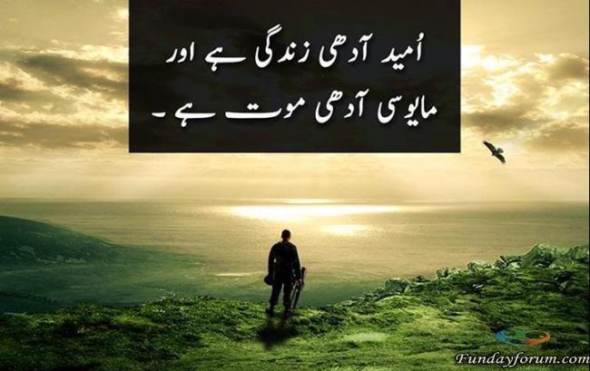 umeed adhi zindagi hy