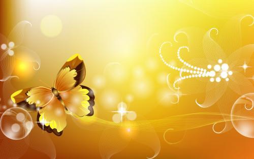 hd-3d-wallpaper-butterfly.jpg