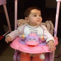 Anaya Mir