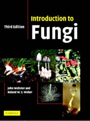 Introduction to Fungi by webster